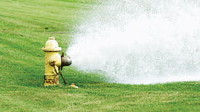 stub_Water-Network-Mod_iSt_7870677_L_flushing-yellow-fire-hydrant